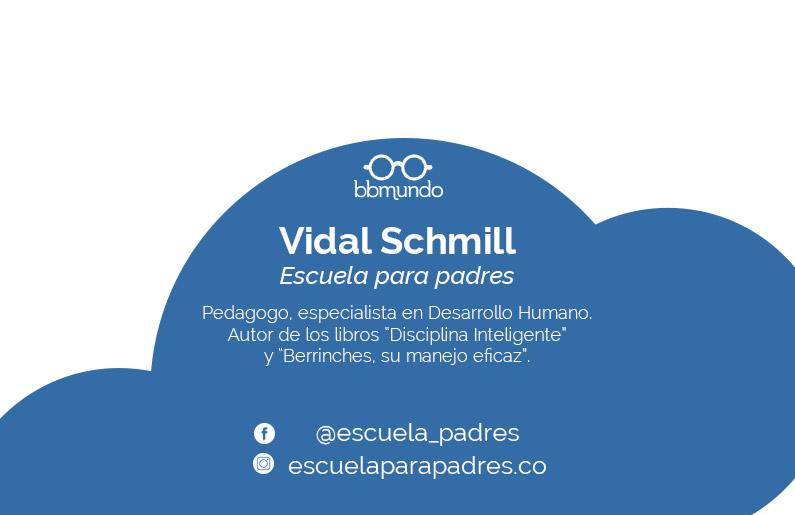 Ficha Vidal Schmill